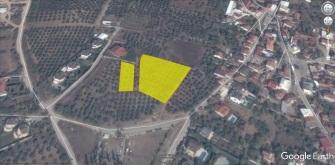 Bademli-4.500 m2 villa imarlı-1